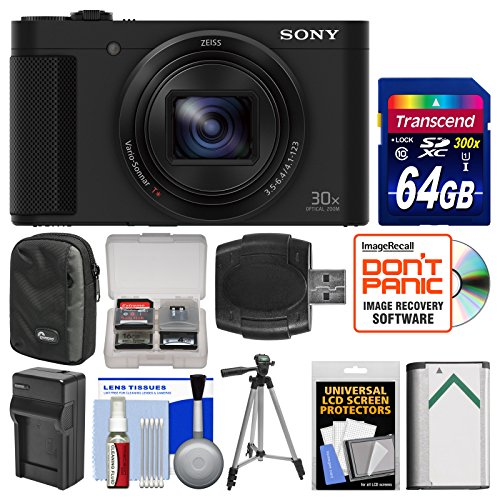 Sony Cyber-Shot DSC-HX80 Wi-Fi Digital Camera with 64GB ...